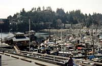 Gibsons Busy Harbour